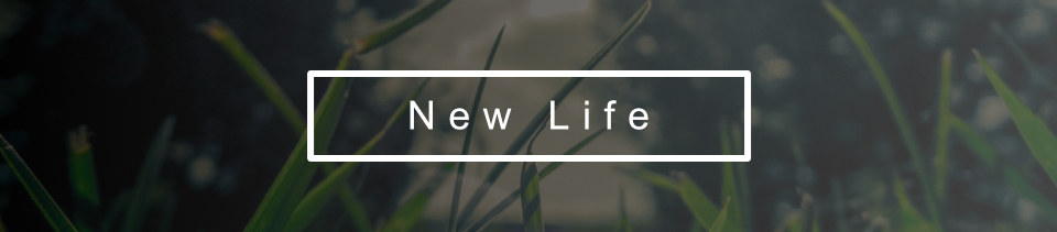 Life_Series_registration_banner_New_960
